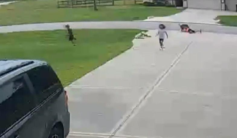 Teksas. Nastolatek uratował 6-latka zaatakowanego przez pitbulla