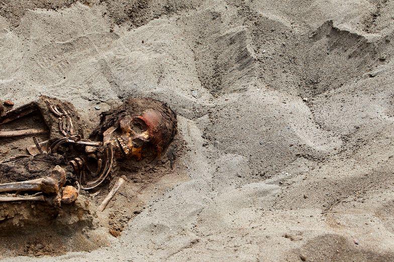 Największa ofiara z dzieci. W Peru odnaleziono masowy grób