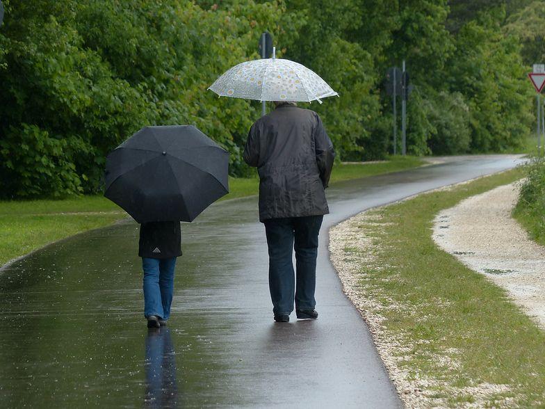W tym tygodniu czekają nas przede wszystkim opady deszczu.