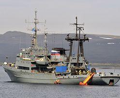 Rosja. Zwierzęta zatopiły łódź desantową Floty Północnej