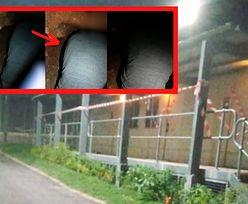 Australia. Wykopali tunel, aby uciec z ośrodka dla imigrantów. Wśród nich Polak