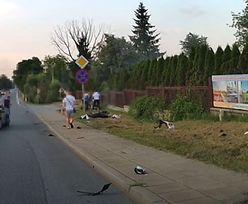 Przerażający wypadek motocyklisty na Podkarpaciu. Wszystko nagrał wideorejestrator