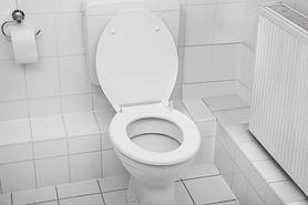 Sedes to nie śmietnik. MPWiK przypomina, czego nie wrzucać do toalety