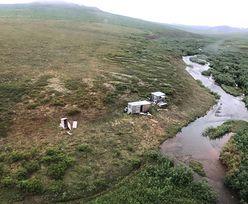 Dramat na Alasce. Polowanie na człowieka trwało tydzień
