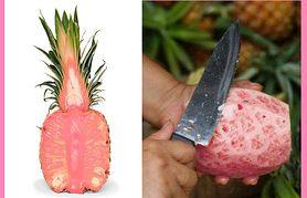 Różowy ananas stanie się lekarstwem na raka