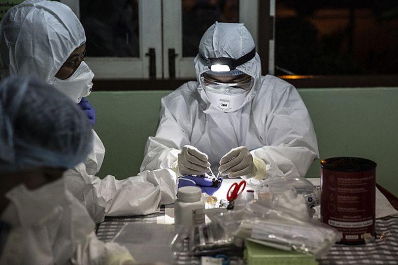 Eksperymenty na nietoperzach w Wuhan. Na jaw wyszły nowe fakty