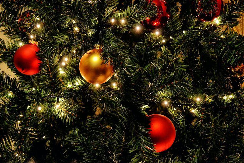 Choinka w różnych stylach. Jak ubierasz świąteczne drzewko?