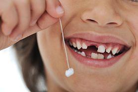 Wróżka zębuszka – kiedy się pojawia, czary wróżki zębuszki, jak długo czaruje, zęby stałe