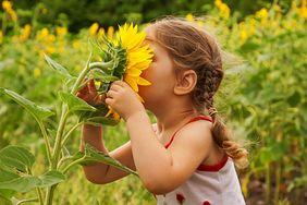Nieoceniony wpływ zapachów na zdrowie twojego dziecka
