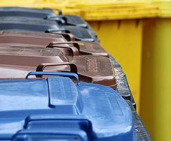 Aż 13 proc. Polaków nie segreguje śmieci. Wiemy, dlaczego [BADANIE]