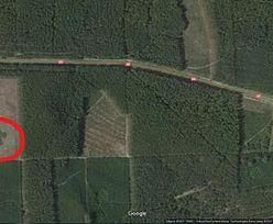 Dziwny znak na mapach Google. W środku polskiego lasu