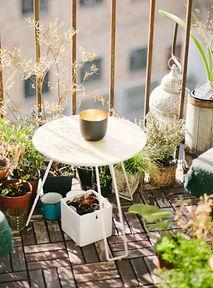 W tym roku truskawki tylko z własnej doniczki! Oto pomysły na prosty ogród na balkonie