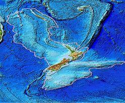 Naukowcy twierdzą, że to ósmy kontynent. Zatopiony ląd ma milion lat