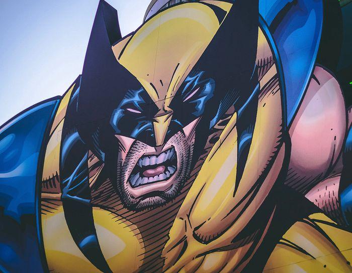 Serial o Wolverine w MCU