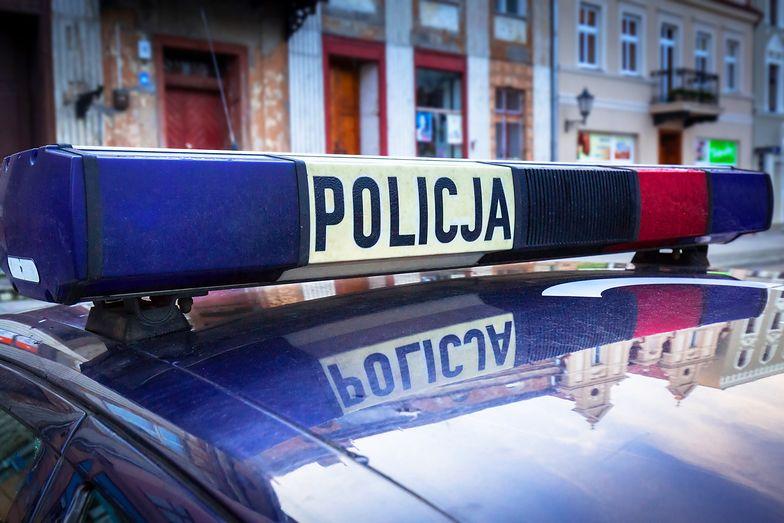 Policjant z Ostródy strzelał do psa. Nie został zatrzymany