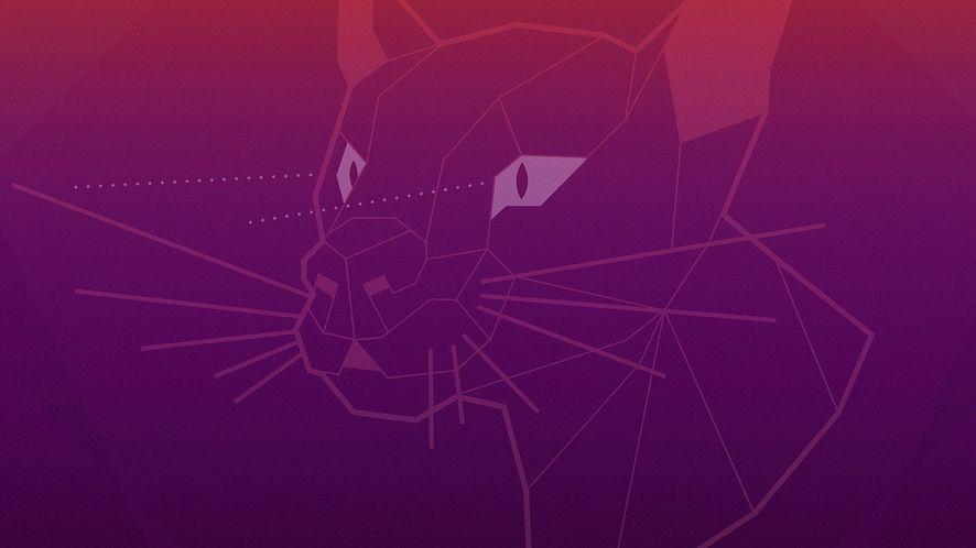 Ubuntu 20.04 LTS otrzyma zmodyfikowany menedżer oprogramowania – paczkę snap