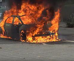 Dramat w Groningen w Holandii. Winne polskie baterie?
