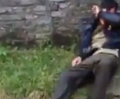 Kradł i zabijał psy. Nie żyje. Spotkała go okrutna kara