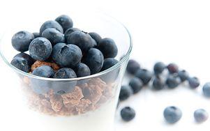Poznaj najcenniejsze źródła probiotyków