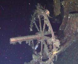Twierdzą, że znaleźli krążownik z 200 tonami złota. Pokazali zdjęcia wraku