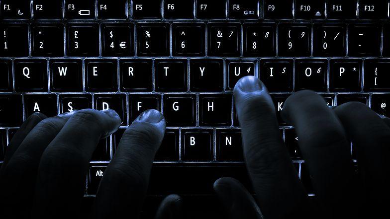 To koniec pirackich filmów w sieci? Kluczowe postaci zatrzymane