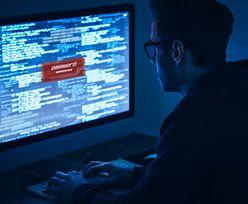 Rosyjscy hakerzy włamali się do sieci niemieckiego rządu. Atak trwał rok