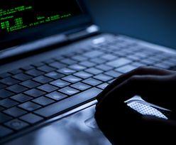 FBI zatrzymało hakerów, którzy wyłudzili 30 milionów dolarów na fałszywych reklamach