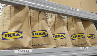 Ikea chwali się wynikami. Ponad 4 mld zł sprzedaży w Polsce