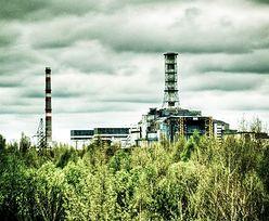 Wielki pożar w Czarnobylu. Płoną tereny wokół elektrowni