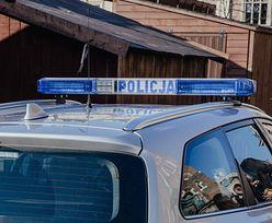 Dolnośląskie. Policjanci zatrzymali oszusta, który wyłudził prawie 10 mln złotych