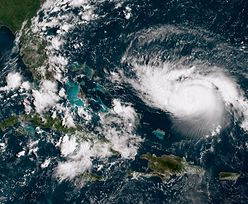Huragan Dorian może ominąć Florydę. Eksperci przewidują nowe miejsce uderzenia