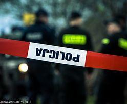 Makabryczne odkrycie w Opolskiem. Ciał dzieci może być więcej