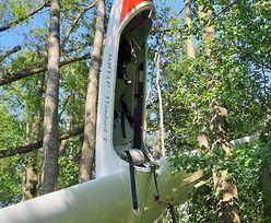 Zderzenie dwóch szybowców w locie. Pilota znaleziono w lesie