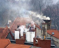 Kary za palenie w piecu. 5 tys. za spalenie mebli. Sprawdzają nawet popiół