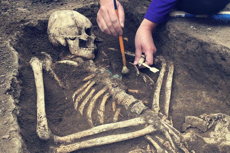 Starożytne szczątki znad Bałtyku. Eksperci ujawnili, co skrywały