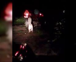 Powiesił psa na traktorze. Policja znalazła sprawcę!