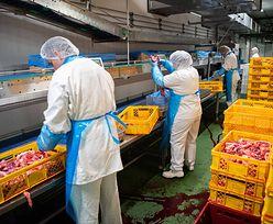 Strajk Ukraińców. Produkowali mięso do Biedronki. Nie dostali wypłat