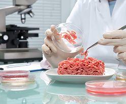 Wyprodukują białko przyszłości. Potrzebują tylko dwóch składników