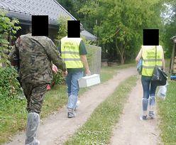 Makabryczne sceny w Białowieży. Weterynarz i myśliwy przyjechali wykonać wyrok na świniach