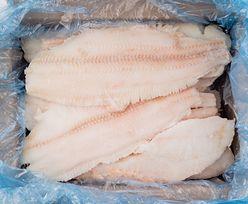 Mrożone kontra świeże. Jakie wybierać ryby?