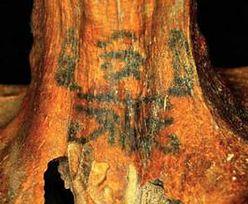 Odkryto znaczenie starożytnych tatuaży z Egiptu. Naukowcy rozwiązali zagadkę