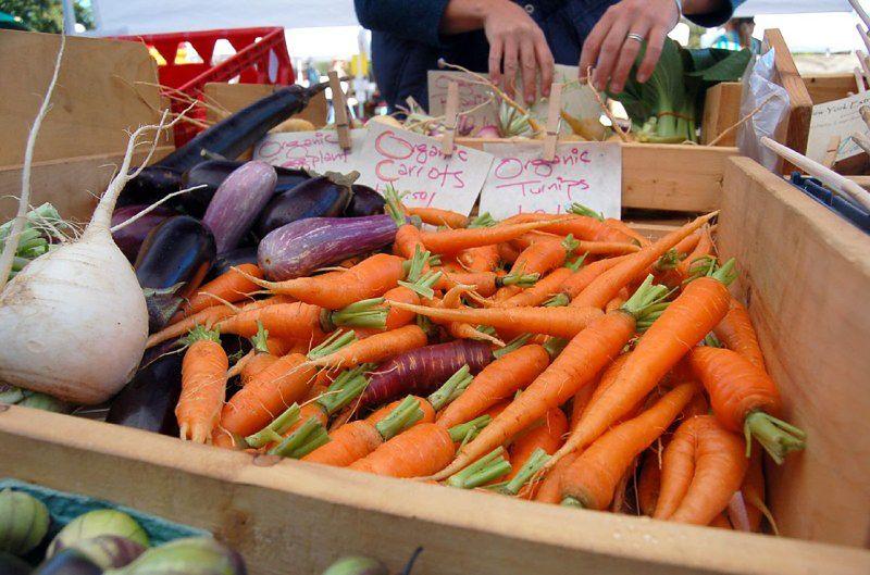 Żywność ekologiczna - marchewki