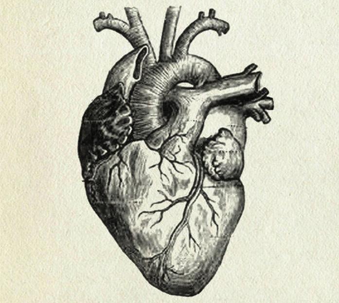 Choroby serca - właściwa praca