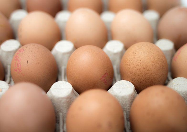Obrzydliwa prawda o polskich jajkach. Masa z zarodków trafia na sklepowe półki