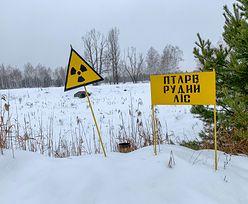 Potężny pożar w Strefie Wykluczenia w Czarnobylu