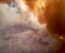 Pożar w Czarnobylu. Komunikat władz Ukrainy dotyczący sytuacji w Kijowie