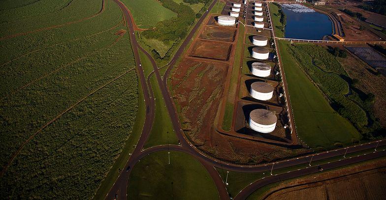 Etanol służy do produkcji środków dezynfekujących.