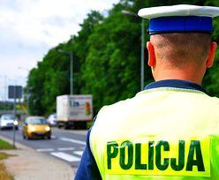 Absurdalne przepisy w polskim kodeksie drogowym. Sprawdź czy straciłbyś prawo jazdy
