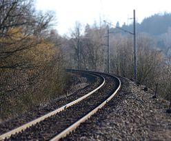 Pod Poznaniem wykoleił się pociąg. Są ranni