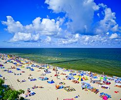 Sinice nad Bałtykiem – 30 lipca 2019. Sprawdź, czym są sinice i jaki jest stan wód nad polskim morzem